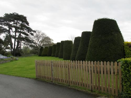 The grounds of King's Hospital School
